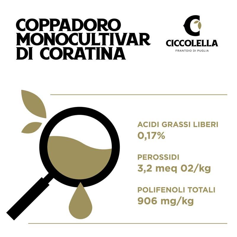 analisi olio Coppadoro